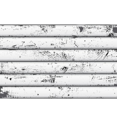white wood texture vector image
