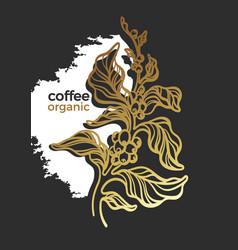 Coffee design lux vector