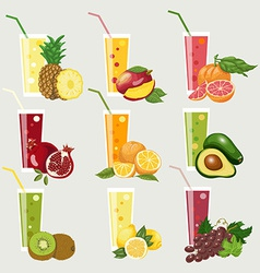 Collection of exotic fruit juices Fresh organic vector