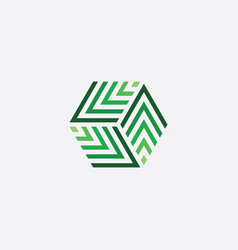green cube hexagon logo box icon vector image