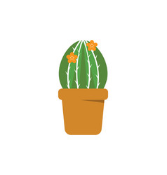 green plant pot isolated vector image