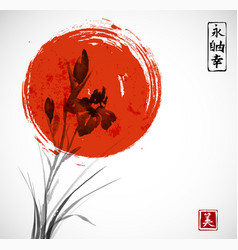 iris flowers and big red sun hand drawn with ink vector image
