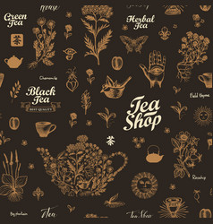 seamless pattern on theme herbal tea vector image