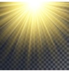 Sun rays effect vector