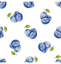 Watercolor pattern of fruit plum vector image