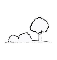 tree bushes natural ecology sketch vector image