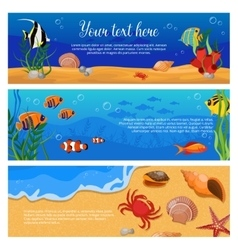 Sea Life Animals Plants Banner Set vector image