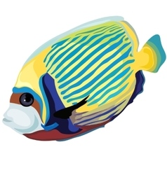 Yellow and blue striped tropical fish isolated vector image vector image