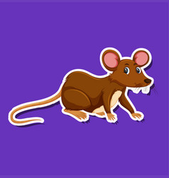 a rat sticker character vector image