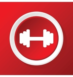 Barbell icon on red vector