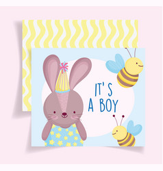 boy or girl gender reveal its a boy cute rabbit vector image