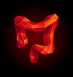 red low poly human colon vector image