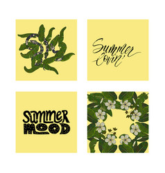 Set of summer tropical postcards with detailed vector