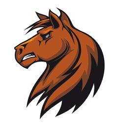 Stallion head vector