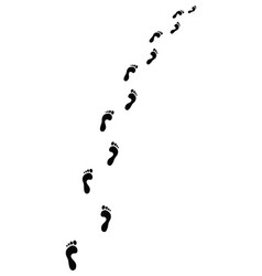 trail of footsteps vector image