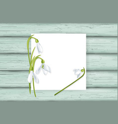 White card with snowdrops on wooden background vector