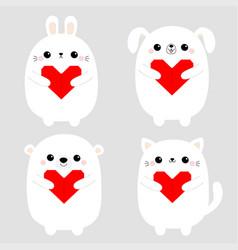 white rabbit cat kitten hare bear dog puppy head vector image