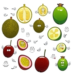 Exotic cartoon feijoa durian and maracuya fruits vector