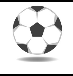 football isolate on white background vector image vector image