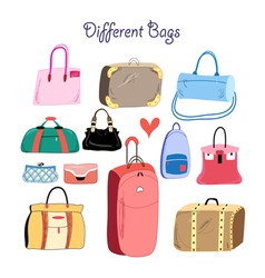 set of different bags vector image
