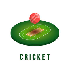 cricket field and ball with shadow in isometric vector image