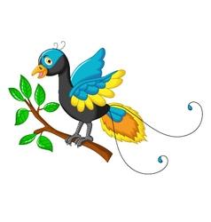 cute paradise bird cartoon vector image