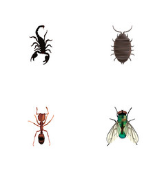 Set of insect realistic symbols with bug wasp vector