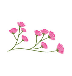 flourishes branch spring image sketch vector image
