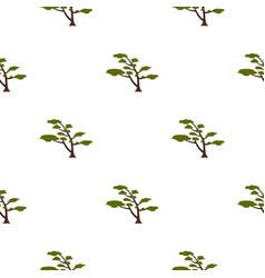 tree with crown pattern flat vector image