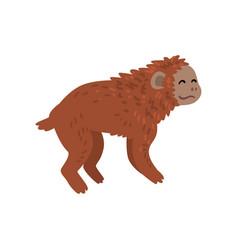 Ape monkey animal progress stage evolutionary vector