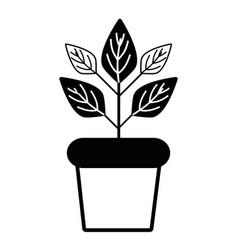 Contour plant inside flowerpot to ecology vector