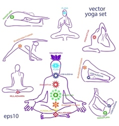 Influence asanas for chakras vector
