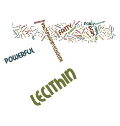 Lecithin is powerful text background word cloud vector