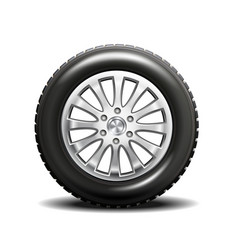 single car tire vector image