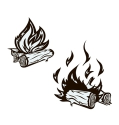 poster with hand drawn bonfire set Flame vector image vector image