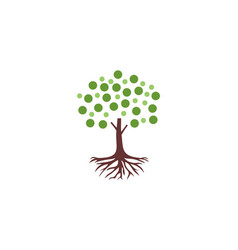 Bubble tree root logo vector