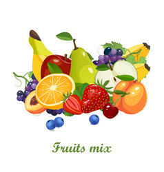 fresh juicy fruits and berries mix on white vector image