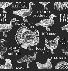 hand drawn poultry seamless pattern goose turkey vector image