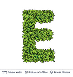Letter e symbol of green leaves vector