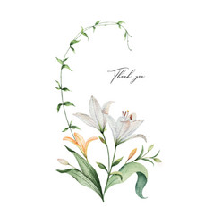 watercolor arrangement lily flowers and vector image
