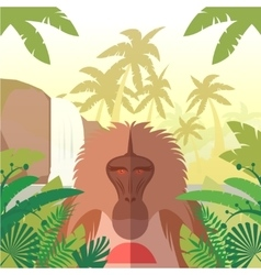 Baboon on the Jungle Background vector image vector image