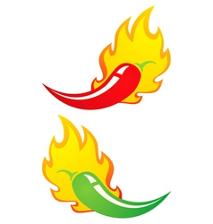 Chili fire vector image