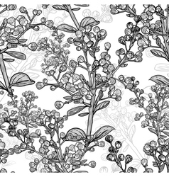 Floral monochrome ornament with branches vector image vector image