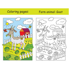 coloring and color for children goat vector image