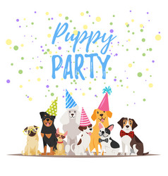 Dog birthday party greeting card vector