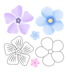 Periwinkle forget-me-not pattern flower set vector