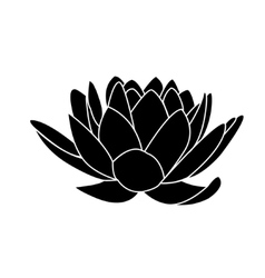 lotus flowers icon vector image