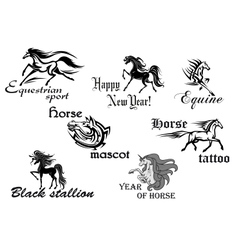 Black horse stallions mascots vector image