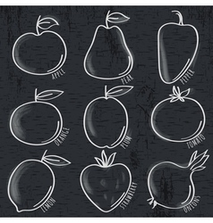 set of organic vegetable and fruit on blackboard vector image