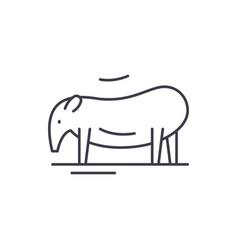 tapir line icon concept tapir linear vector image